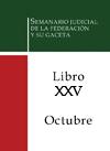 Libro 25 2013 Octubre.  Archivo PDF para descargar, se abrirá en una nueva ventana