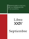 Libro 24 2013 Septiembre.  Archivo PDF para descargar, se abrirá en una nueva ventana